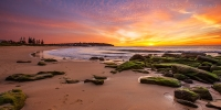 2014MAY_18052014_6-37_Curl_Curl_Sunrise_beach_ocean_Sydney_Northern_beaches_NSW_Australia_by_Pavel_Trotsenko_Lena_Postnova
