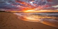 2014MAY_25052014_6-40_Dee_Why_Sunrise_beach_ocean_Sydney_Northern_beaches_NSW_Australia_by_Pavel_Trotsenko_Lena_Postnova