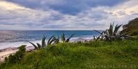 2014_October_04102014_5-30_Dee_Why_Sunrise_beach_ocean_Sydney_Northern_beaches_NSW_Australia_by_Pavel_Trotsenko_Lena_Postnova